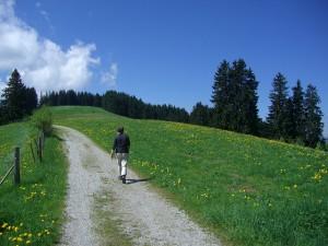hiking-245351_640