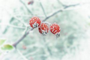 Gönn dir selber Winterpause(n)